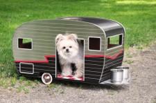 dog camper